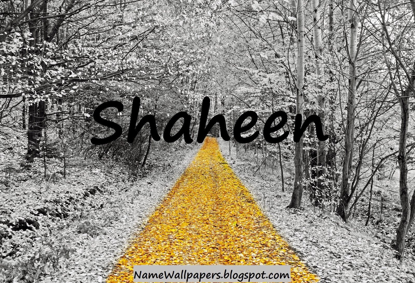 S M Name Wallpaper Name Wallpapers Shahee...