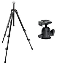 Trepied Manfrotto 055XDB + Rotule 496RC2