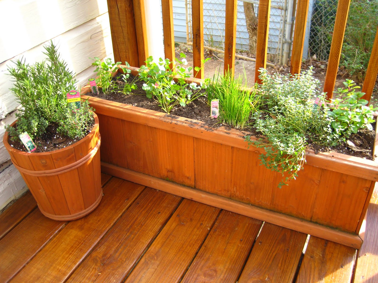 The Smith Nest Patio Herb Garden
