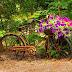 Kreativiti Kitar Semula - Bersatu Dengan Alam
