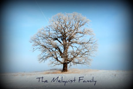 The Melquist Family