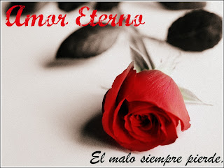 Descargar la novela 'Amor Eterno' completa