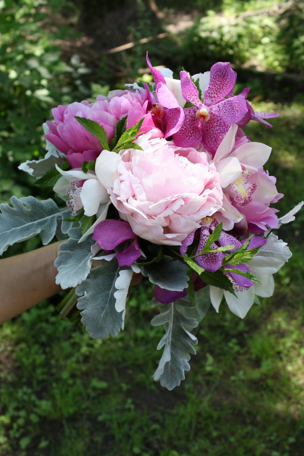 http://3.bp.blogspot.com/-pLCcH1eI1SE/Tf9_HFXgGSI/AAAAAAAAAVQ/I2BbVhiWWXY/s1600/Cymbidium+Orchids+Flowers+Wallpapers+4.jpg