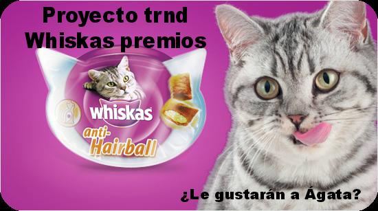 proyecto-trnd-whiskas