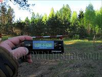 Измерение радиации в Налибокской пуще у деревни Клетище