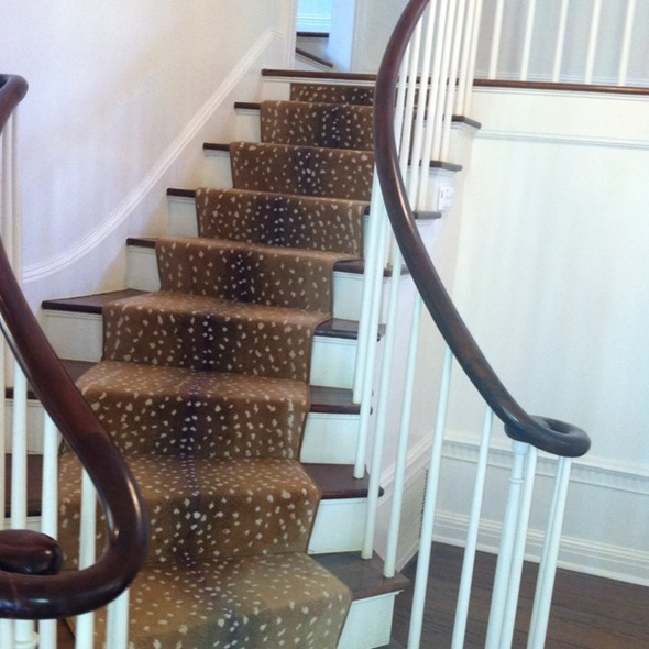 Inspiration in stages for the home antelope stair runner for Leopard print carpet stair runner