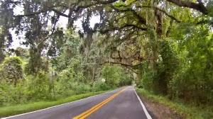 Tallahassee Sehenswürdigkeiten: Miccosukee Road