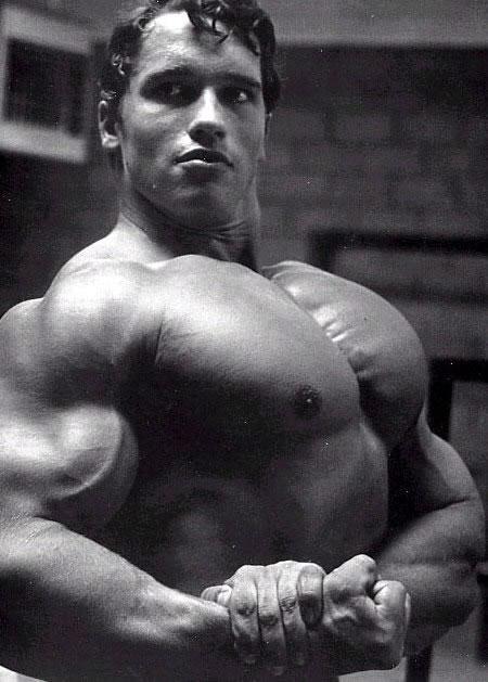 Arnold schwarzenegger bodybuilding more info best celebrity arnold pic source malvernweather Gallery