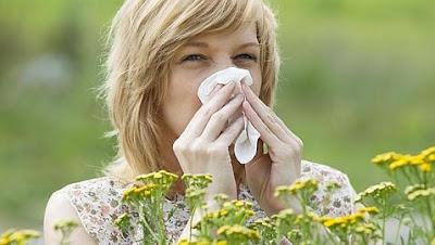 Desencadenantes de alergias