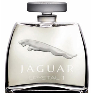 Jaguar Crystal I Jaguar for men