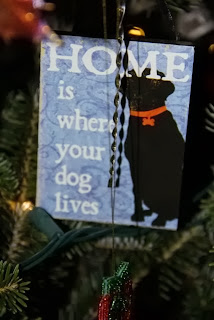 HOME is where your dog lives ornament