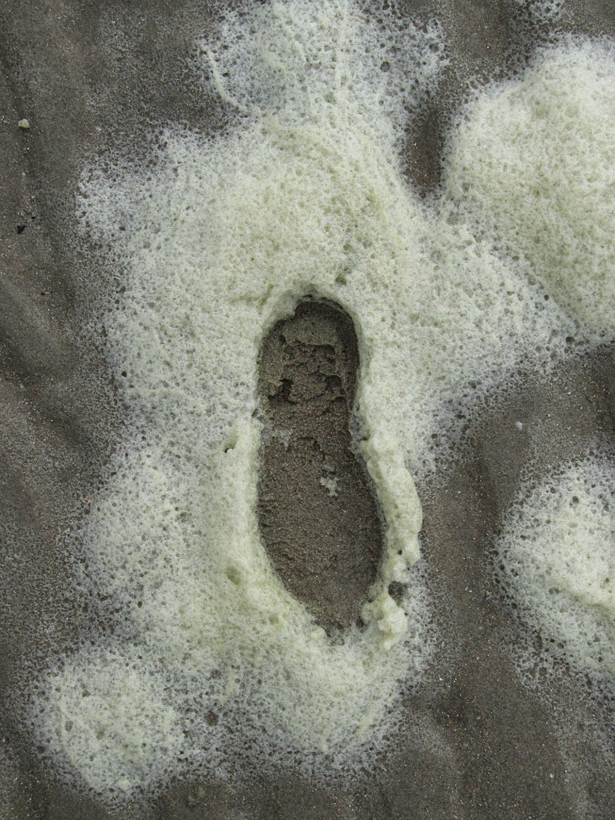 footstep in sea foam