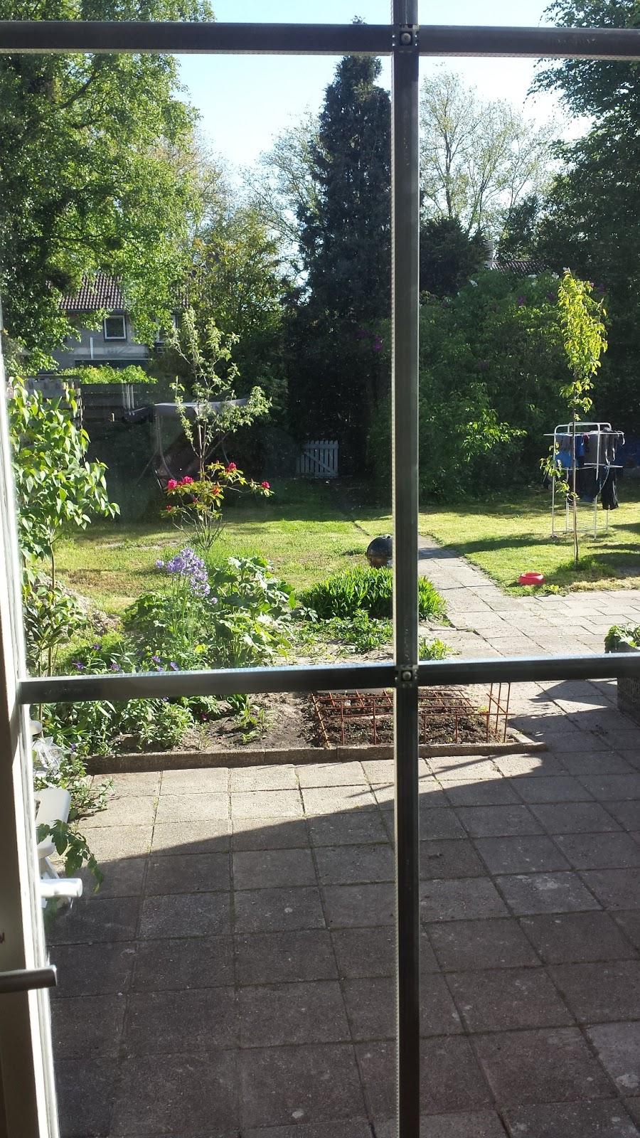Mijn eetbare tuin project   permacultuur