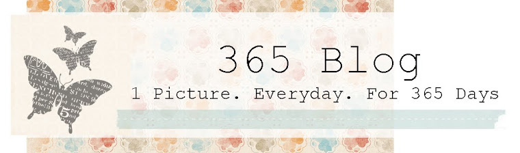 Megan's 365 Blog
