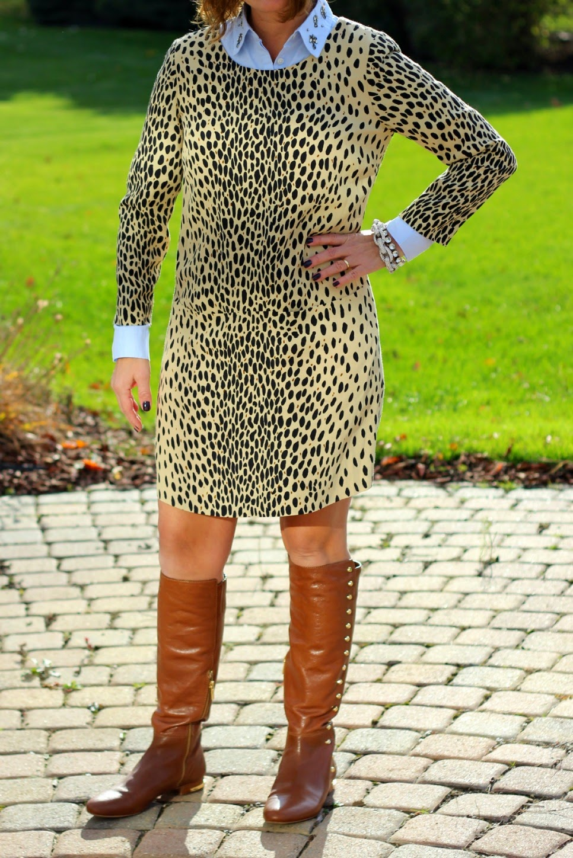 J. Crew leopard shift dress, jeweled collar shirt, cognac riding boots, fall look, fall outfi