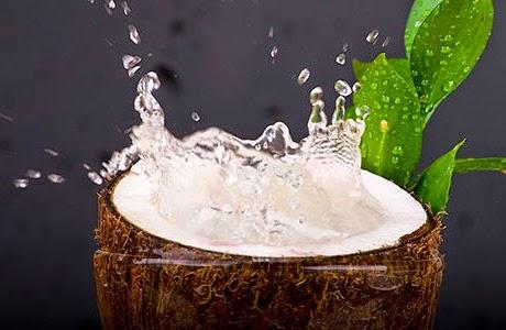 herbal air kelapa merupakan salah satu produk dari tanaman kelapa ...