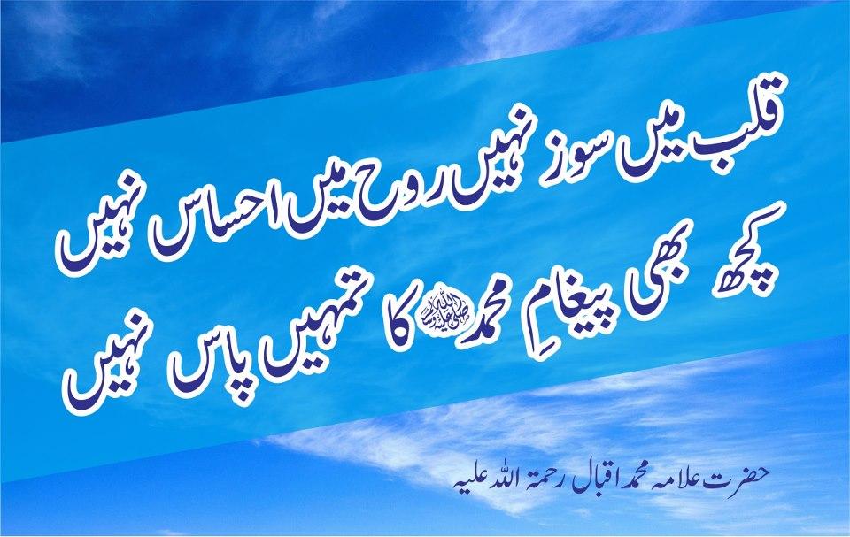 Malik TV KTS: allama iqbal poetry urdu images