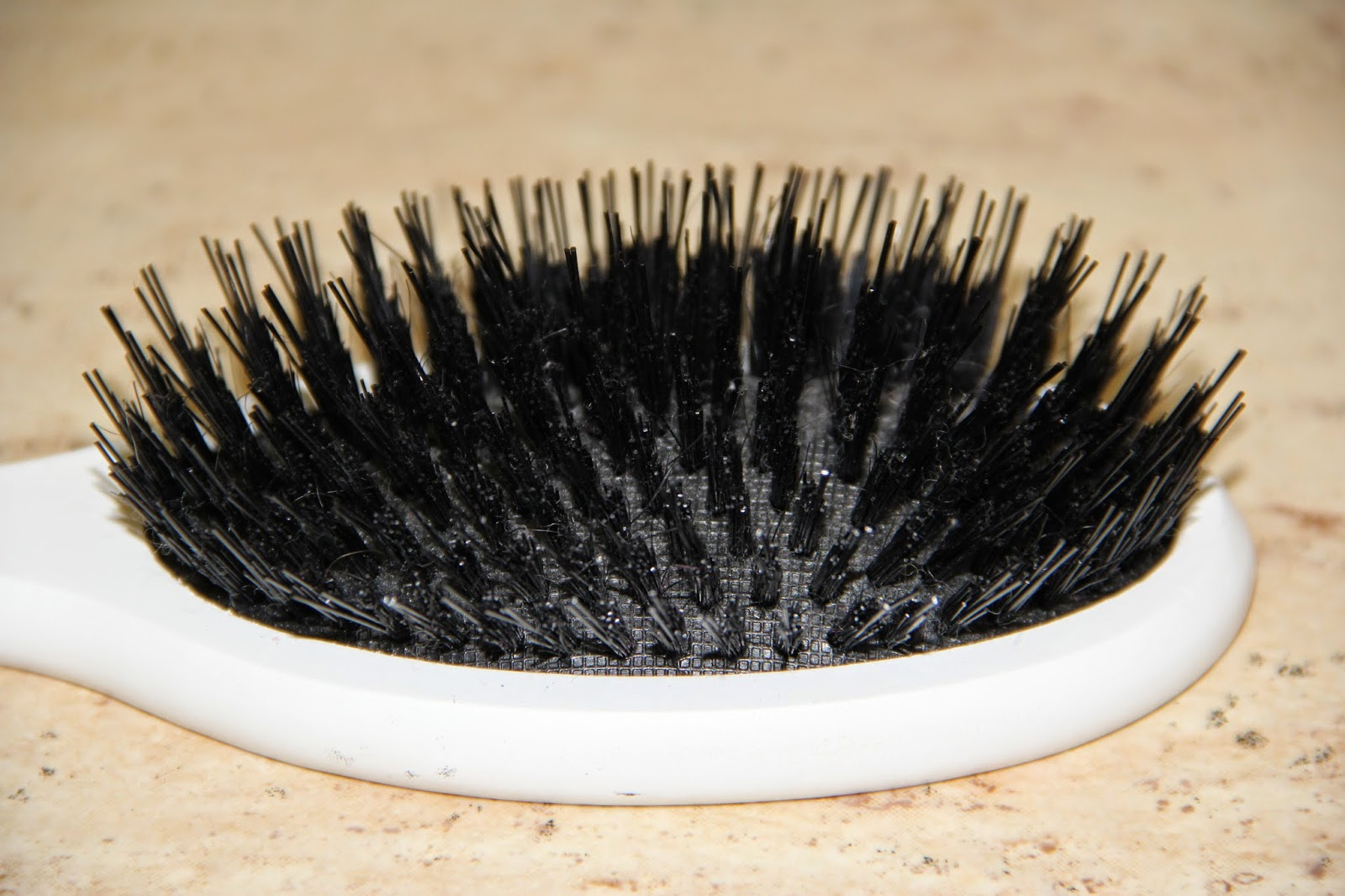 Julia Potaychuk Balmain Hair Brush Review