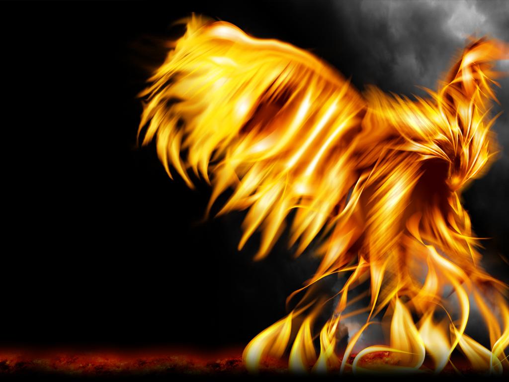 <b>Phoenix Wallpaper</b> by Aurinona on DeviantArt