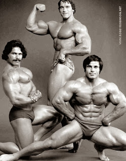 Ed Corney, Arnold Schwarzenegger and Franco Columbo ● www.robbyrobinson.net/dvd_built.php ●