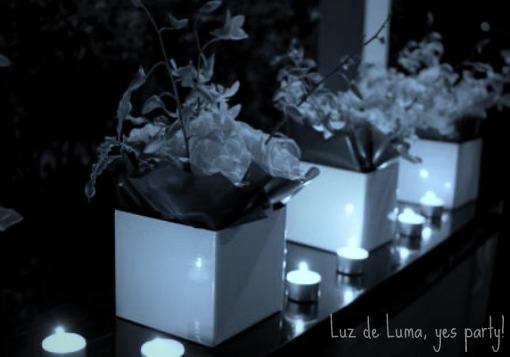 Luzdeluma