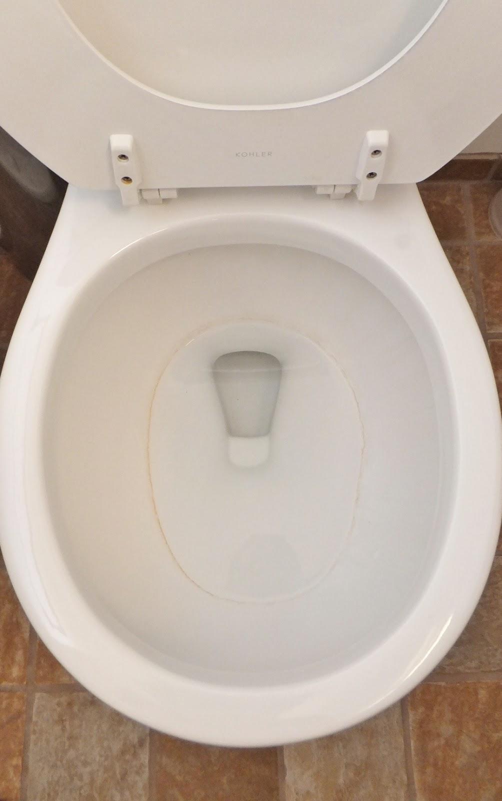 Toilet : Fresh Coat of Paint: Lets Talk Toilet Rings