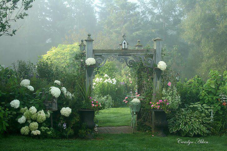 rosas no jardim poema : rosas no jardim poema:Poesias Modernas: MEU JARDIM