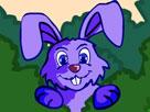 Tavşan Dekorasyon Oyunu