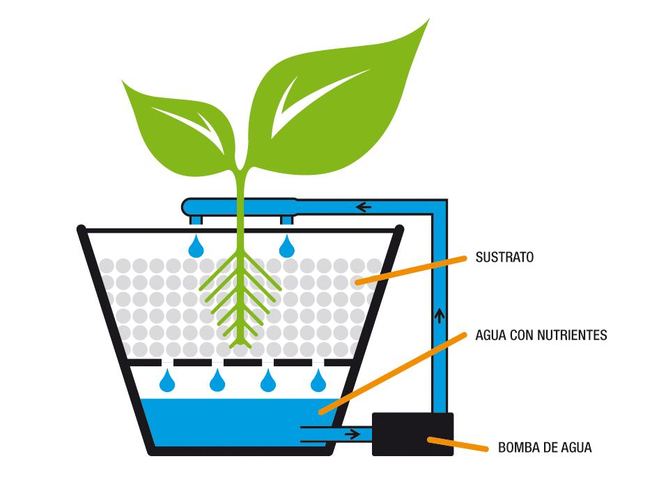 Urveg cultivo hidrop nico urbano for Sistema de riego vertical