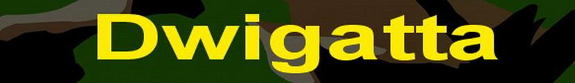 DWIGATTA