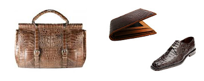 alligator and crocodile leather goods