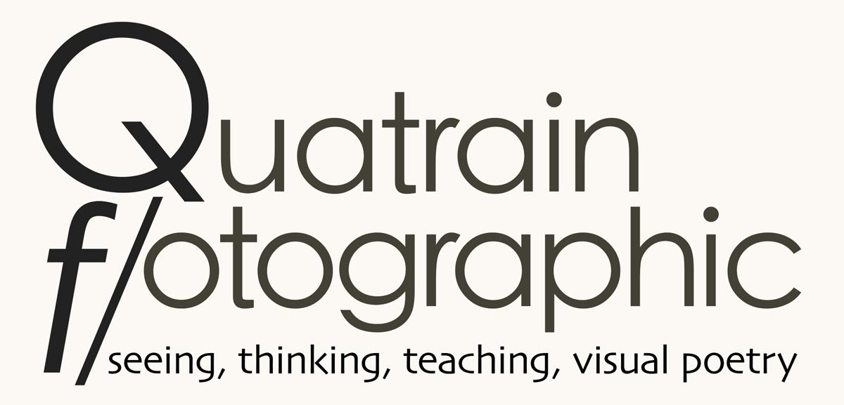 Portfolios, courses, and artist info...