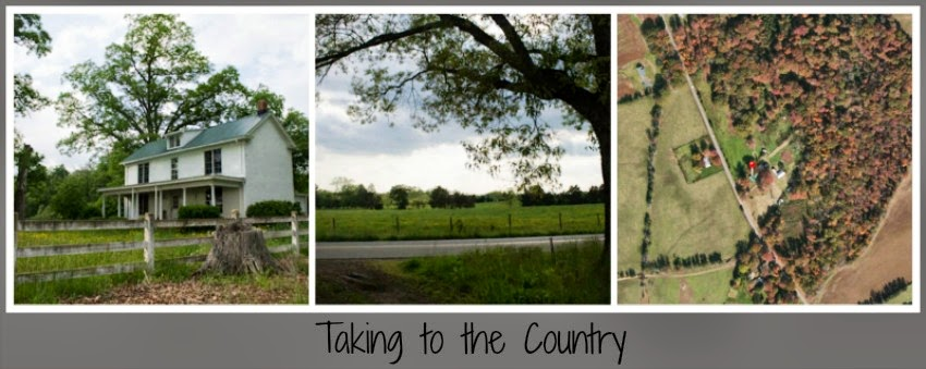 Taking to the Country