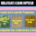 Miraculus Herbs - Carum copticum