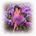 """A flor de amor-perfeito"