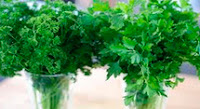 Greek yogurt face mask parsley