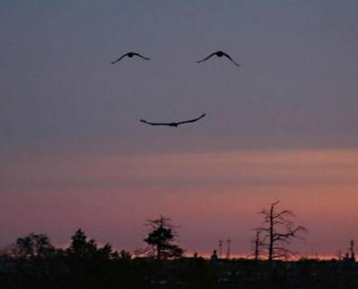سجّل حضورك ومغادرتك بإلقاء التحية.. :)1 Smile