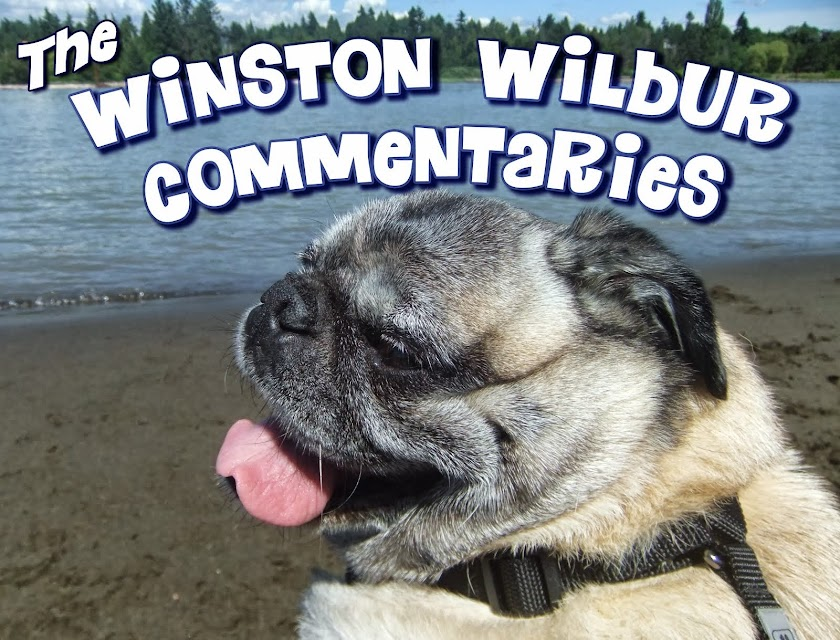 The Winston Wilbur Commentaries