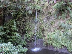銭洗弁財天一条の滝