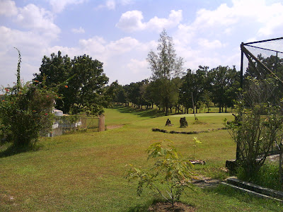 Cepu golf courses