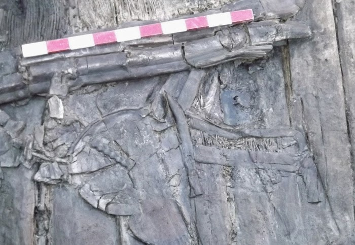 4,000 year old Kurgan burial unearthed in Georgia