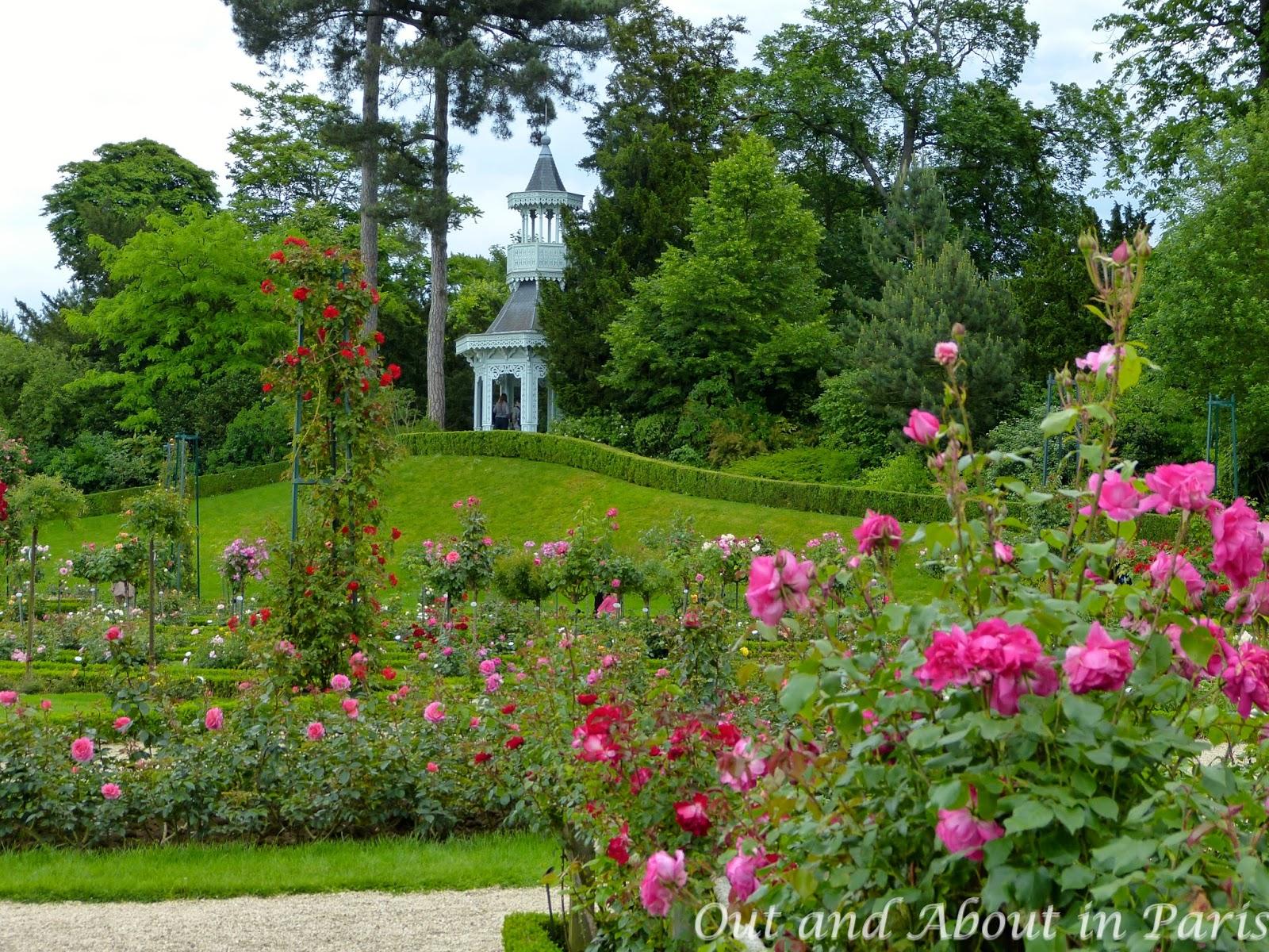 Parc de bagatelle award winning roses peacocks and the for Bagatelle jardin