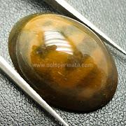 Batu Permata Akik Fosil Lafal Allah - SP802