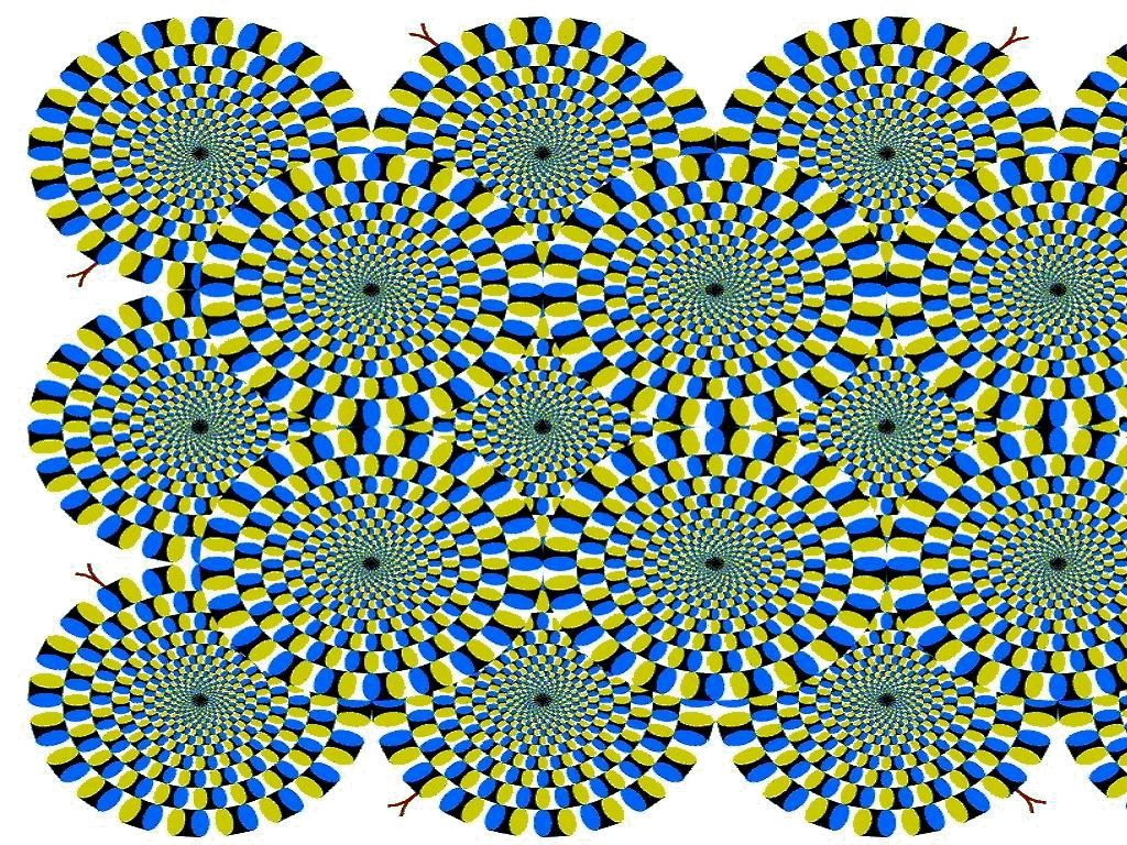 Tapandaola111 Best Optical Illusions Ever