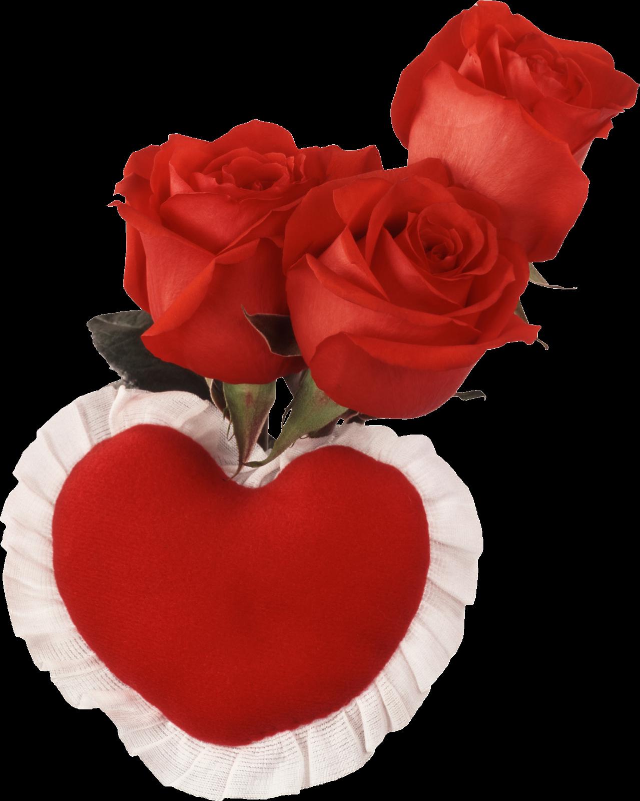 Imagen de amor con rosas rojas con movimiento  - Imagenes De Rosas Rojas Brillantes