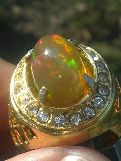 lustreus opal
