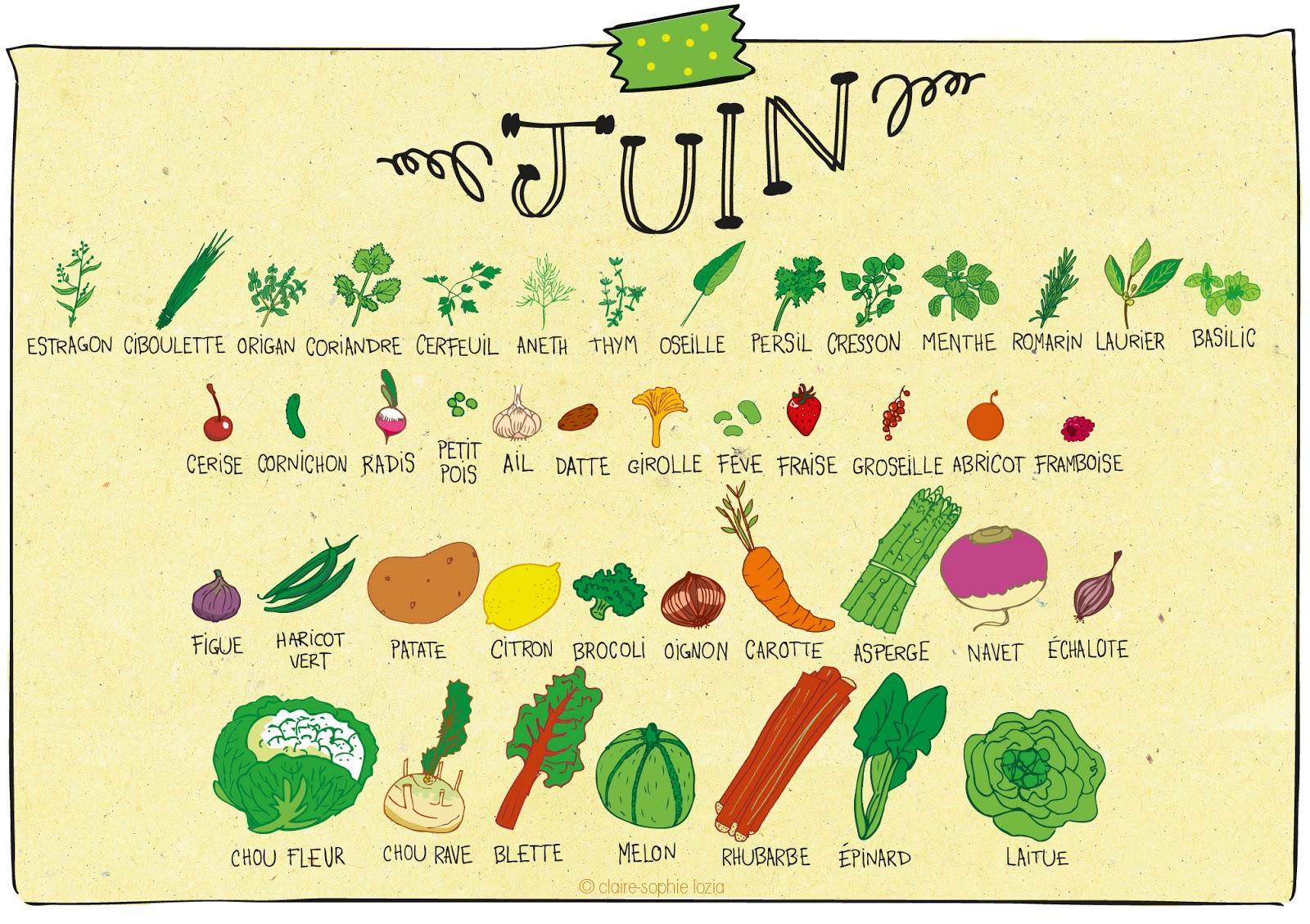 Juin calendrier des fruits et l gumes pissenlit - Fruit de saison juin ...