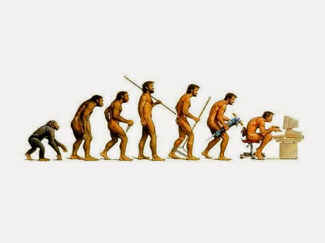 Human evolves like Framework