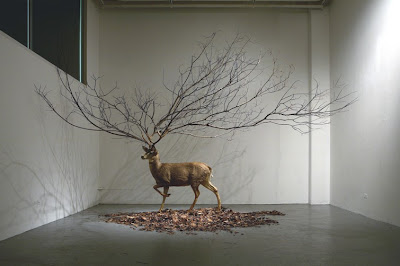 Myeongbeom Kim installations