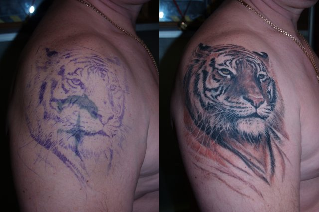 1990Tattoos: Animal Tattoos For Men Owl Sleeve Tattoos For Girls